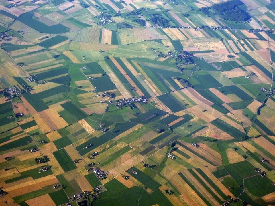 Cena ziemi rolnej w Polsce i kujawsko-pomorskim
